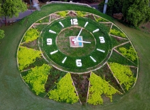 Flower-clock-sayajibaug